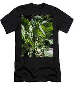 Bountiful Brussel Sprouts Men's T-Shirt (Athletic Fit)