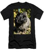 Cairn Terrier Portrait Men's T-Shirt (Athletic Fit)