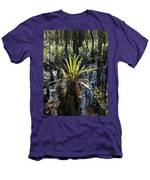 Cypress Knees And Ferns Men's T-Shirt (Athletic Fit)