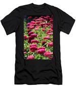 Fuchsia Zinnia Men's T-Shirt (Athletic Fit)