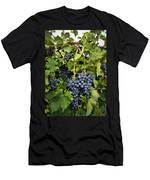 Harvest Divine Men's T-Shirt (Athletic Fit)