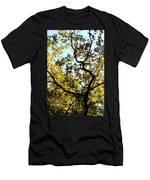 Illuminated Oak Tree Men's T-Shirt (Athletic Fit)