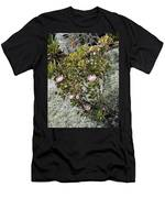 King Protea Bush 1 Men's T-Shirt (Athletic Fit)