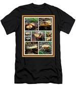 Lactarius Torminosus - Yellow Mushrooms Men's T-Shirt (Athletic Fit)
