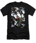 Light In The Trees Men's T-Shirt (Athletic Fit)
