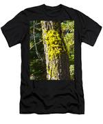 Moss On Tree Along Sentinel Dome Trail In Yosemite Np-ca Men's T-Shirt (Athletic Fit)