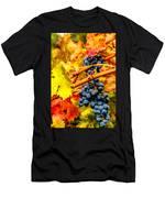 Napa Valley Grapes, California Men's T-Shirt (Athletic Fit)