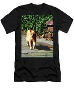 Orange Tabby Taking A Walk Men's T-Shirt (Athletic Fit)