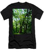 Proportion From The Series The Elements And Principles Of Art Men's T-Shirt (Athletic Fit)