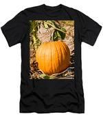 Pumpkin Growing In Pumpkin Field Men's T-Shirt (Athletic Fit)