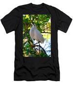 Rookery 11 Men's T-Shirt (Athletic Fit)
