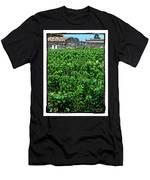 St. Emilion Winery Men's T-Shirt (Athletic Fit)