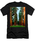 Tall Trees In Yosemite National Park Men's T-Shirt (Athletic Fit)