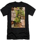 Temple Ruins 05 Men's T-Shirt (Athletic Fit)