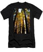 The Redwoods Of Florence Keller Park Men's T-Shirt (Athletic Fit)