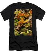Autumn Ferns On Pickle Creek At Hawn State Park Men's T-Shirt (Athletic Fit)