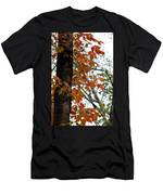 Autumn Glory At Tannehill Men's T-Shirt (Athletic Fit)