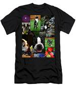 Boston Terrier Photo Collage Men's T-Shirt (Athletic Fit)