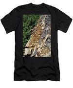 Bug Filled Bear Clawed Log Men's T-Shirt (Athletic Fit)