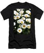 Daisy In A Field Men's T-Shirt (Athletic Fit)