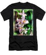 Elegant Beallara Orchid Men's T-Shirt (Athletic Fit)