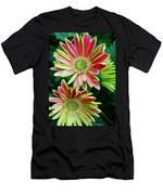 Gerber Daisies Men's T-Shirt (Athletic Fit)