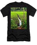 Irrigated Rice Field Men's T-Shirt (Athletic Fit)