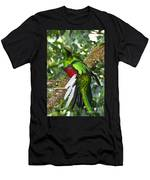 Male Resplendent Quetzal Men's T-Shirt (Athletic Fit)