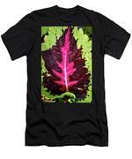 Many Leaves Of Coleus Men's T-Shirt (Athletic Fit)