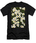 Ox-eyed Daisies, Banff National Park Men's T-Shirt (Athletic Fit)
