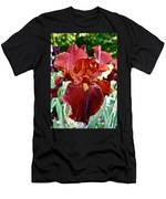 Red Iris Men's T-Shirt (Athletic Fit)