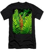 Fern Fractals In Nature Men's T-Shirt (Athletic Fit)