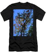 10-15-16--0776 Blue Sky # 2 Don't Drop The Crystal Ball Men's T-Shirt (Athletic Fit)