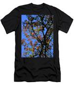 10-15-16--0777 Blue Sky # 3 Don't Drop The Crystal Ball Men's T-Shirt (Athletic Fit)