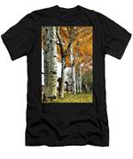 Fenceline Of Fall Aspens Men's T-Shirt (Athletic Fit)