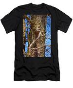 Bare Tree Branches In Early Spring Men's T-Shirt (Athletic Fit)