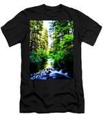 Salt Creek Falls Men's T-Shirt (Athletic Fit)