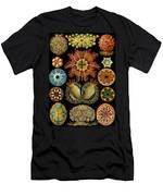 Ascidiae Men's T-Shirt (Athletic Fit)