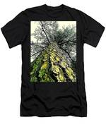 Bark Up The Tall Pine Tree Abstract In Felicina  Louisiana Men's T-Shirt (Athletic Fit)