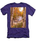 Birches On The Kancamagus Highway Men's T-Shirt (Athletic Fit)