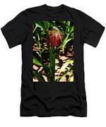 Corn On The Cob Men's T-Shirt (Athletic Fit)