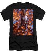 Fall Tree Men's T-Shirt (Athletic Fit)