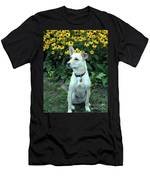 Fawn Posing Men's T-Shirt (Athletic Fit)