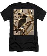 Frenchbroad Flycatcher Men's T-Shirt (Athletic Fit)