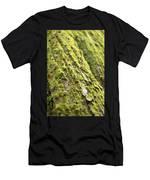 Moss On A Cedar Men's T-Shirt (Athletic Fit)