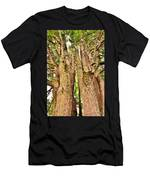 One Tree Six Trunks Men's T-Shirt (Athletic Fit)