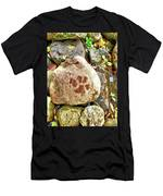 Paws On The Rocks Men's T-Shirt (Athletic Fit)