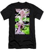 Pisgah Versicolor Men's T-Shirt (Athletic Fit)