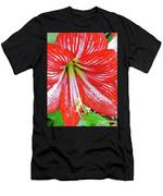 Red And White Beauty Men's T-Shirt (Athletic Fit)