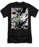 The Shy Desert Lily Men's T-Shirt (Athletic Fit)